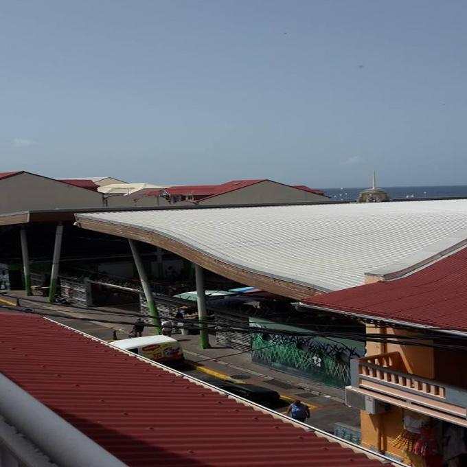 Location Immobilier Professionnel Local professionnel Basse-Terre (97100)